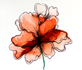 Flower painting on paper