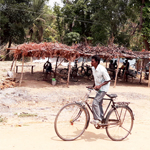 Man is riding cycle